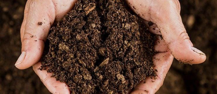 Χώμα από τον Πόντο